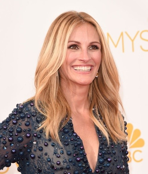 Julia Roberts' Medium Layered Hairstyle At Emmy Awards 2014