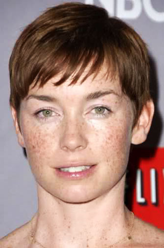 Julianne Nicholson's Cute Pixie Hairstyle