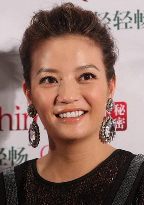 Zhao Wei's High Messy Updo Hairstyle