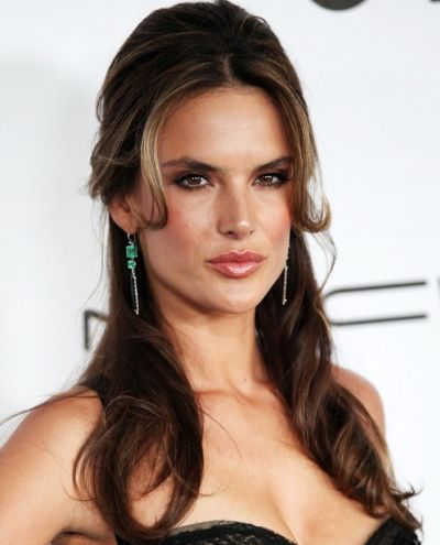 Alessandra Ambrosio's Long Brown Hair In Formal Half-Up Hairdo