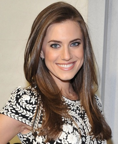 Allison Williams Long Sleek Straight Brown Layered Feminine Hairstyle