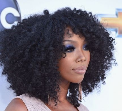 Brandy's Long Black Hair In Very Curly Afro Hairstyle