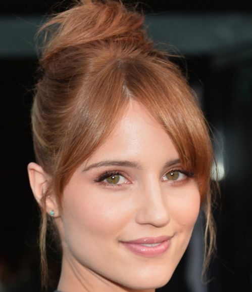 Dianna Agron's Auburn Hair In Formal Bun Hairdo