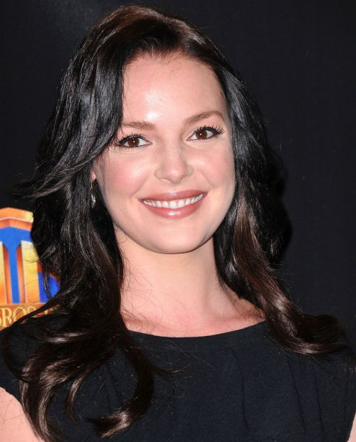 Katherine Heigl's Long Brunette Layered Sexy Hairstyle