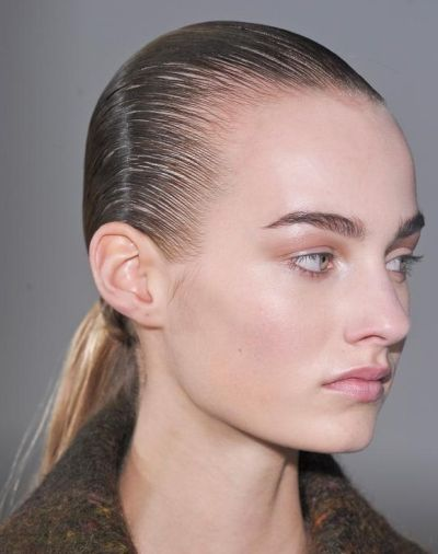 Shiny Sleek Ponytail Casual Fall Evening Careforhair