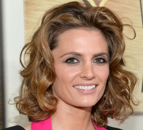Stana Katic's Brown Medium Curly Formal Awards Hairstyle